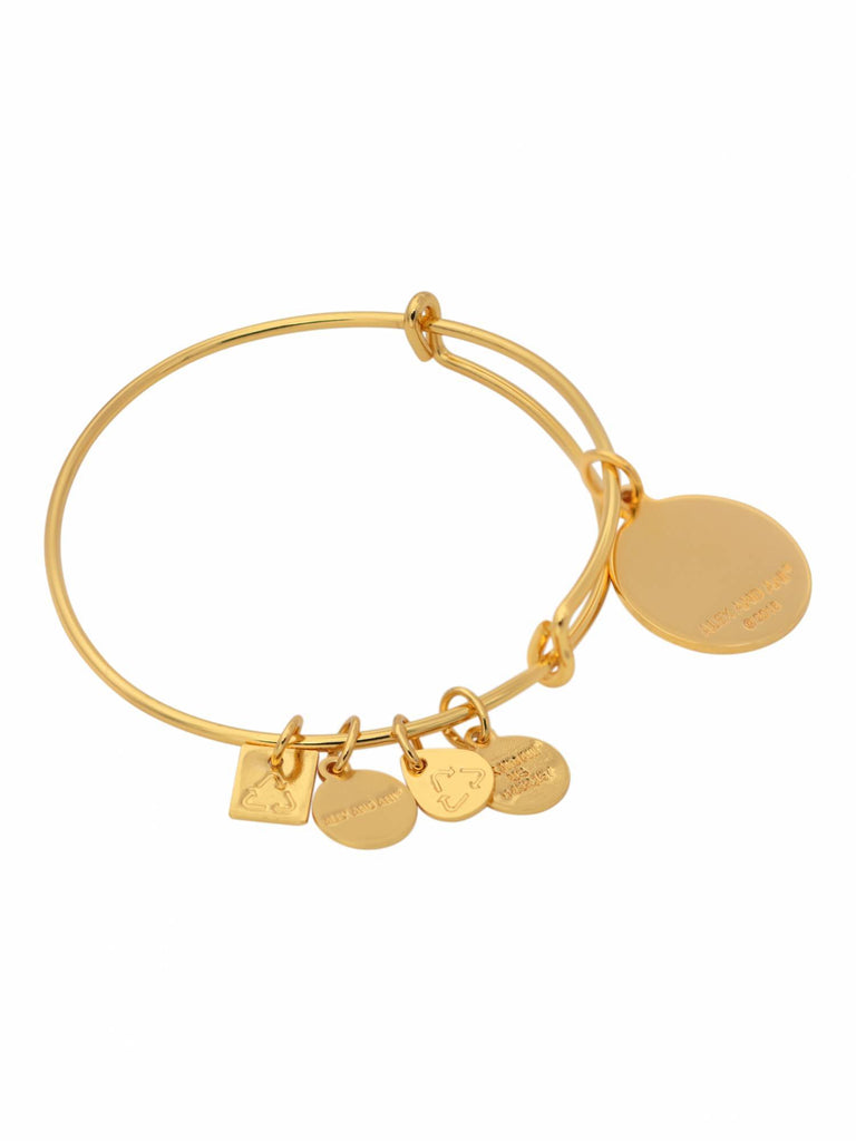 Alex and Ani Today is a Gift Charm Bangle -