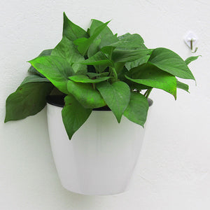 MOST DECORATIVE SELF WATERING PLASTIC PLANTERS- IMPORTED