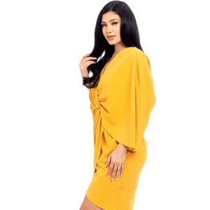 Sleeve Wrap Mini Dress