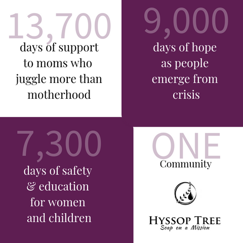 Hyssop Tree infographic - a look back