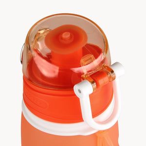 Collapsible  Water Bottles - Allur-Boutique
