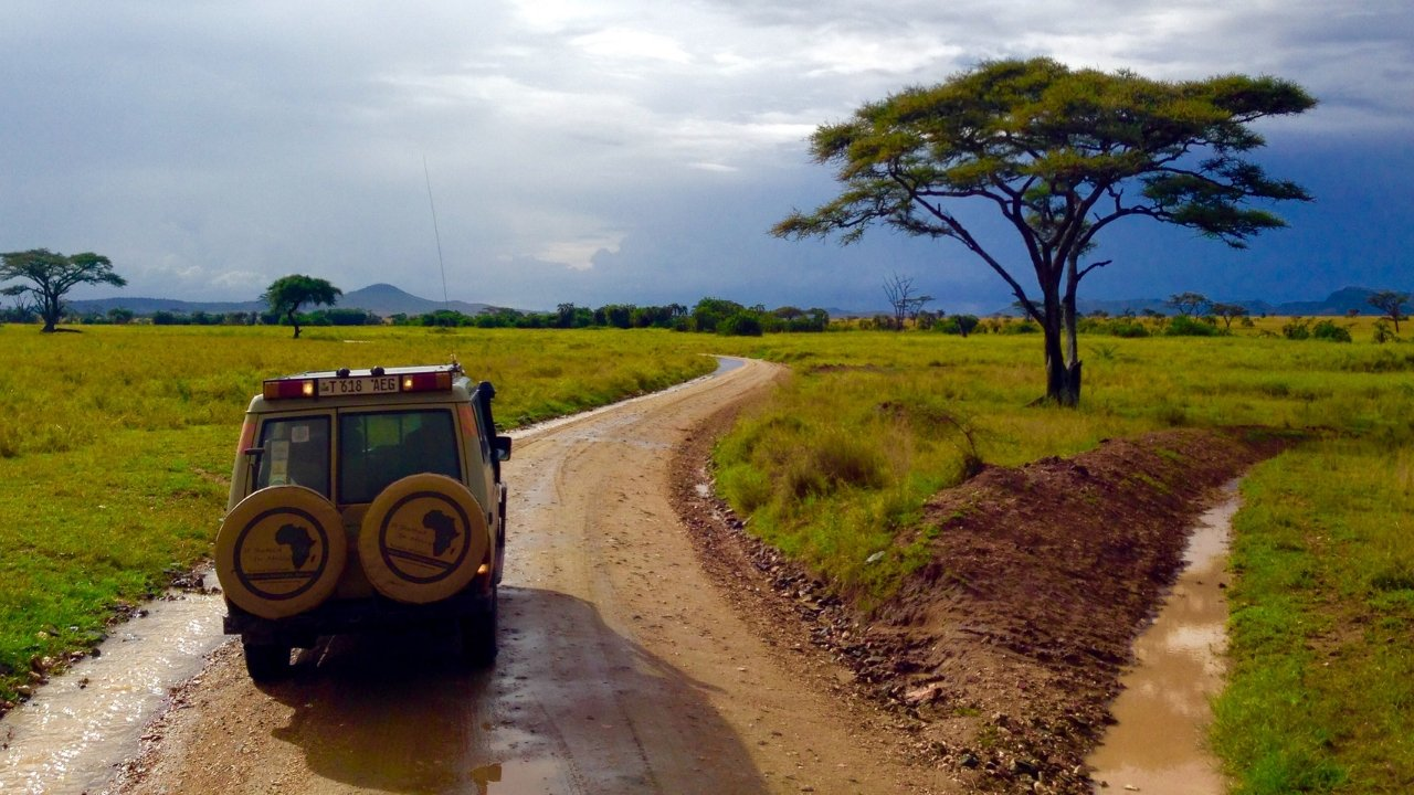On Safari in Tanzania | A Map to Anywhere