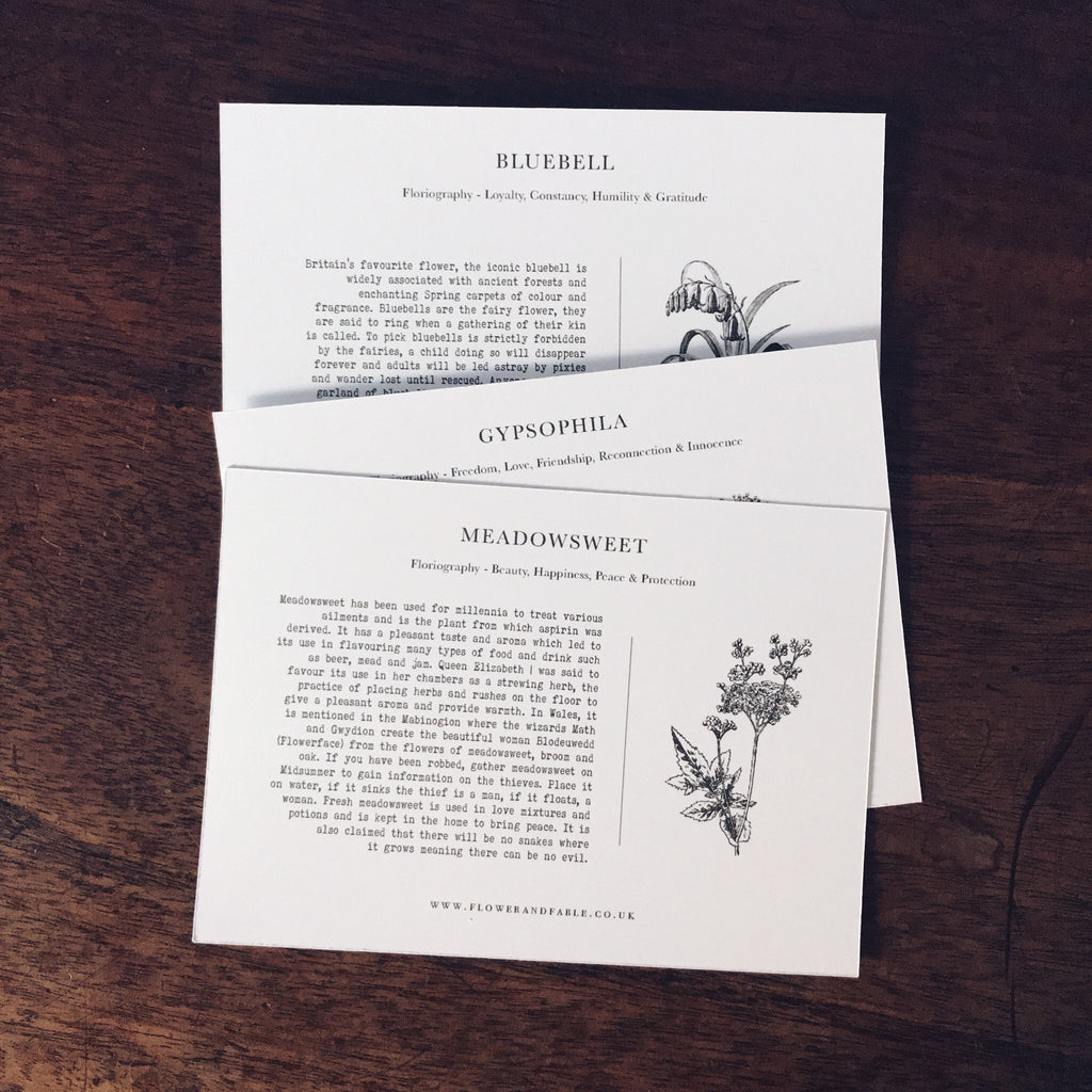 Postcards - Language of flowers