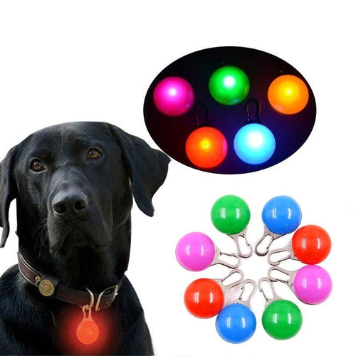 Safety LED Flashlight For Pets