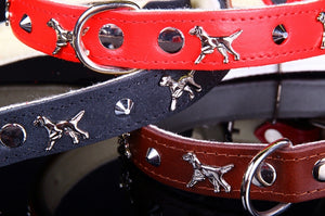 ZOOLeszcz Leather Collar