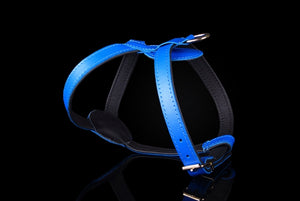 ZOOLeszcz Leather Harness