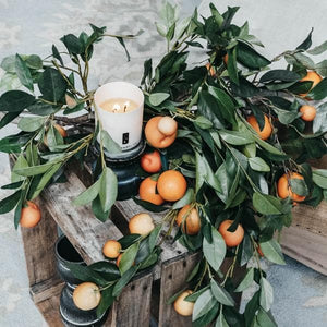Orange citrus candle double wick | TLC Candle Co