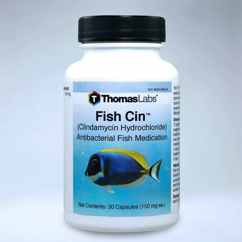 Fish Cin Antibacterial Aquarium Tabs Qty 30 Count 150 mg
