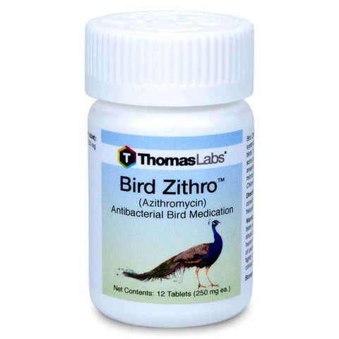 Bird Zithro Antibacterial Bird Treatment - 250mg