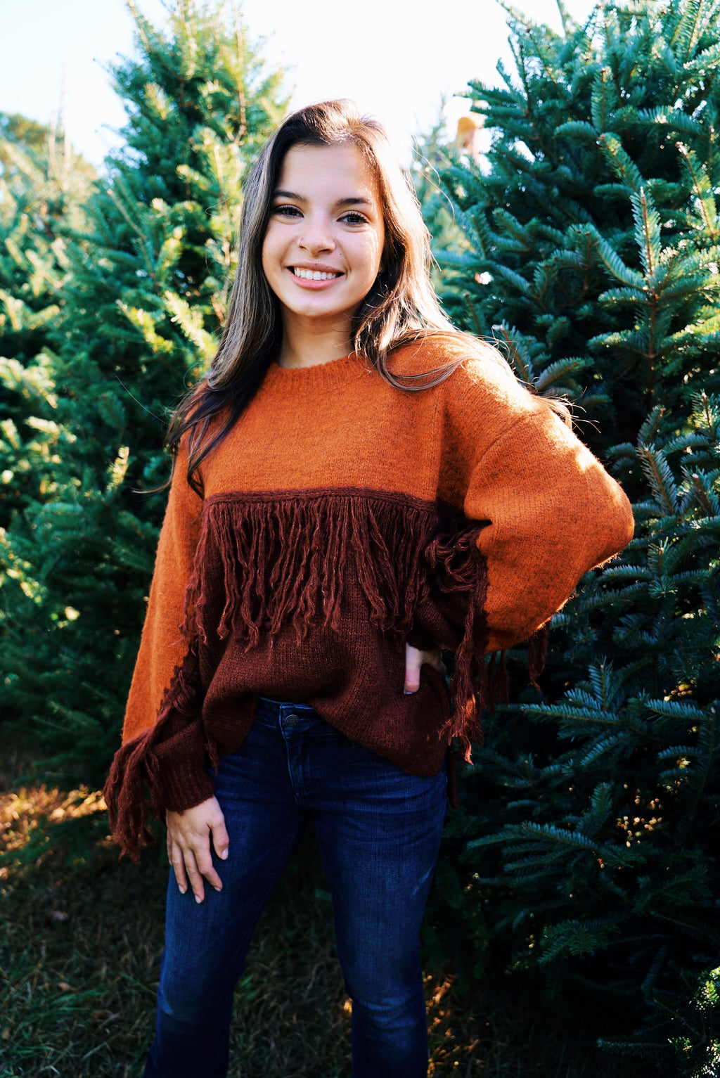 Chasing Fall Sweater- Brown/Rust