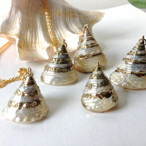 Troca Shell Necklaces
