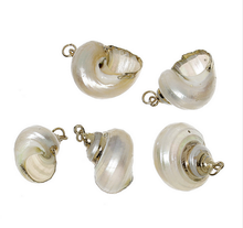 Load image into Gallery viewer, Snail Shell Necklaces