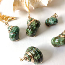 Load image into Gallery viewer, Green Conch Shells Necklaces