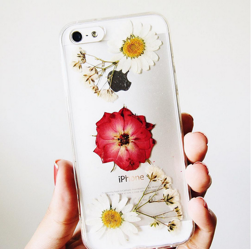 Lovely Daisies Real Flower Case (iPhone 6/6s)