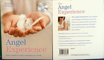 ANGEL EXPERIENCE (INCLUDES CD)