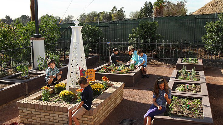 Children in community garden at Jamboree's affordable community Birch Hills in Brea, CA.