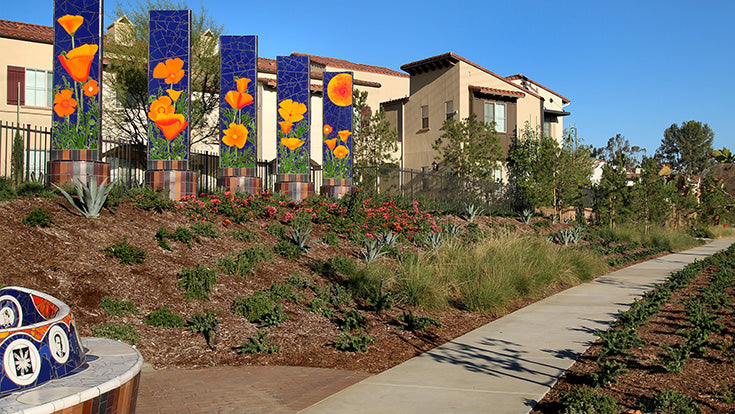 Jamboree's Birch Hills is a leading example of Inclusionary housing and the impact it can have.