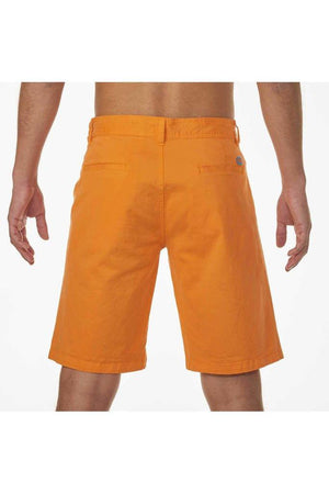TURTLE Bermuda Shorts Golden Poppy