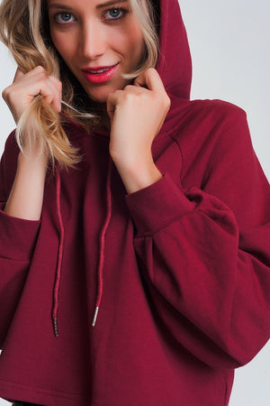 Crop Hoodie with V Neck in Maroon - Himelhoch's