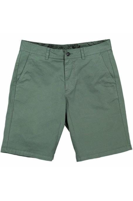 TURTLE Bermuda Shorts Duck Green