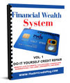 Do It Yourself Financial Credit System (eBook)