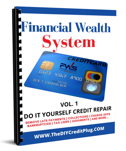 Do It Yourself Financial Credit System - Curtis G Martin