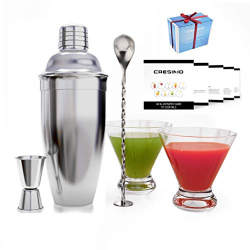 21 Best and Coolest Glass Shakers