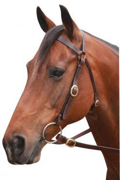 Barcoo Brass Bridle Showcraft Brown