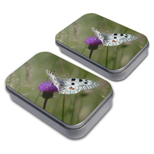 Apollo Butterfly Decorative Craft Trinket Metal Tin Box Set of 2
