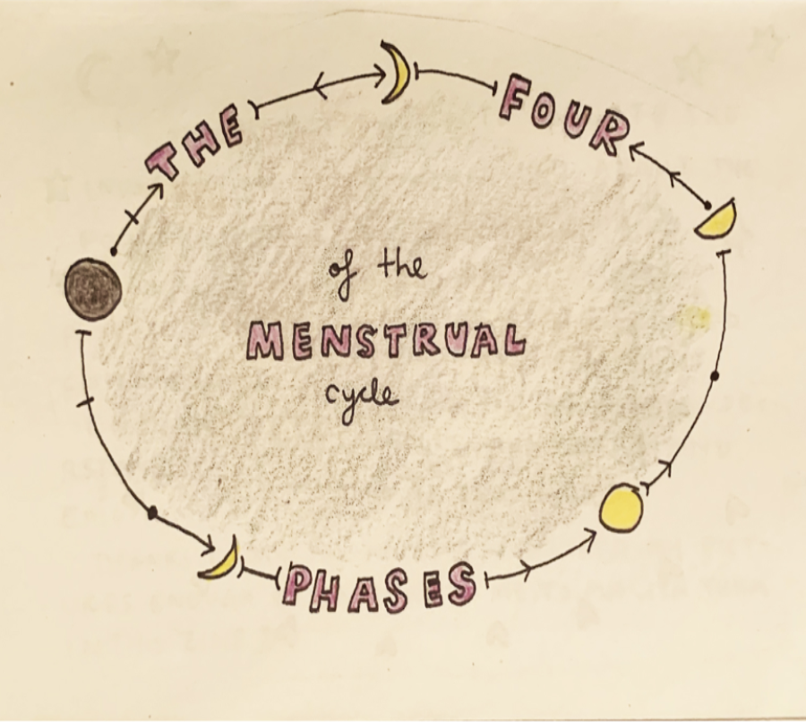 The Four Menstrual Phases
