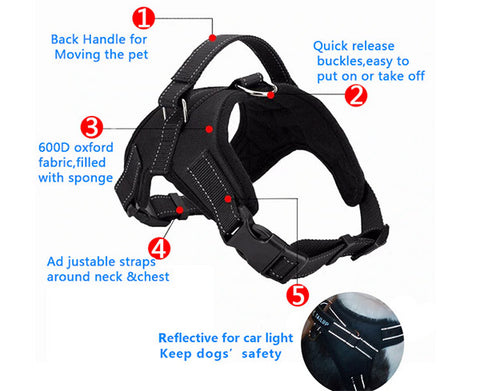 dog harness features