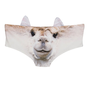 Look At These Crazy Panties! - The Lezbrarian