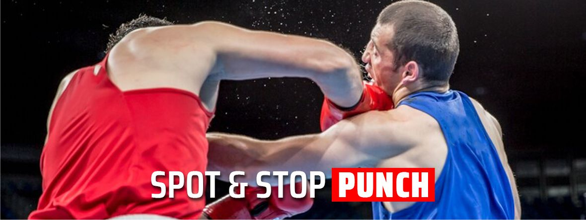 Spot & Stop Punch in Boxing and MMA