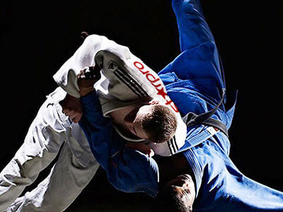 Judo Karate Martial Arts