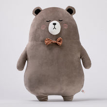 Load image into Gallery viewer, Mr. Brown Bear