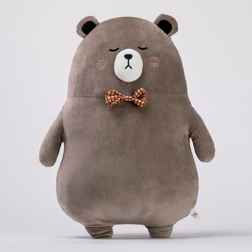 Mr. Brown Bear