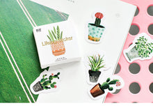 Load image into Gallery viewer, Kawaii Green Potted Plant Sticker-45 pcs/box -paperhouse