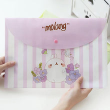 Load image into Gallery viewer, Cheeky Rabbit A4 Floders - 4pcs