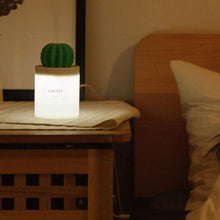Load image into Gallery viewer, Cactus USB Diffuser + Humidifier