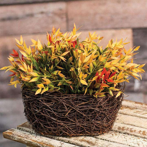 Oval Angel Vine Basket, 8""