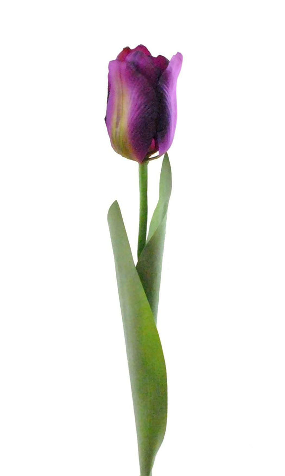 Flower Tulip Purple S/4