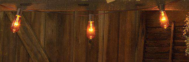 Orange Edison Light Strand, 10ct Light Strands CWI+