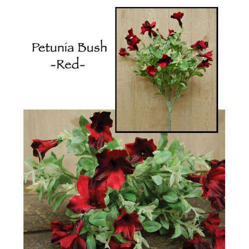 '+Petunia Bush, Red Everyday CWI+