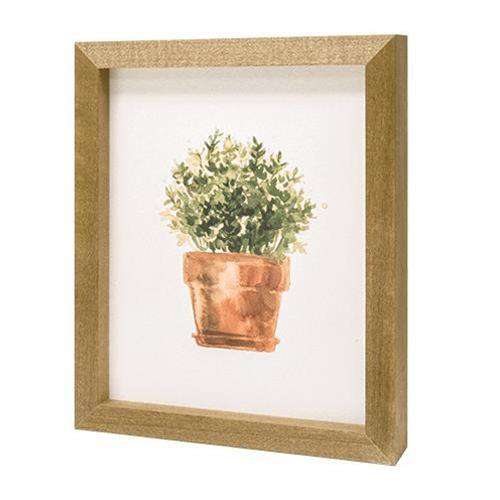 Potted Herb #1 Print Framed Prints CWI+