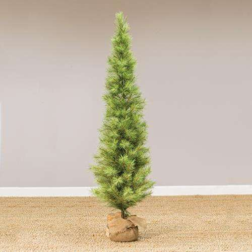 Slim Long Needle Pine Tree w/Burlap Base, 6 ft. General CWI+