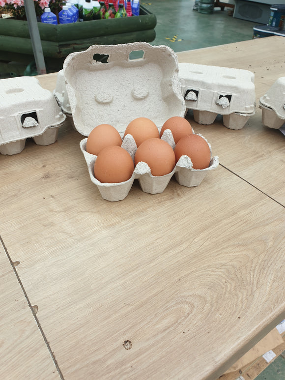 Dozen Farm Fresh Eggs