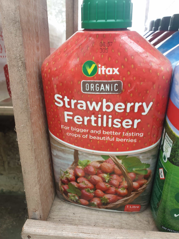 Strawberry Fertilizer
