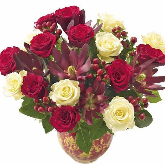 <p>This Festive selection of luxury Roses combining with seasonal hypericum berries and tropical leucadendron create a beautiful luxurious Bouquet. Absolutely beautiful for Christmas we've expertly hand-tied them in Christmas Red to create an amazing gift!</p>