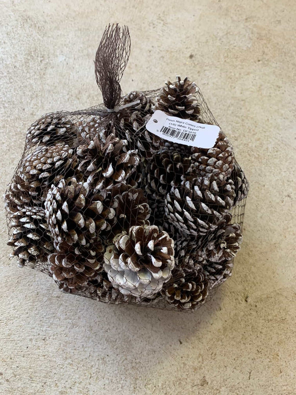 White tipped Cones 1kg