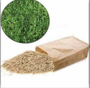 Grass Seed 1kg